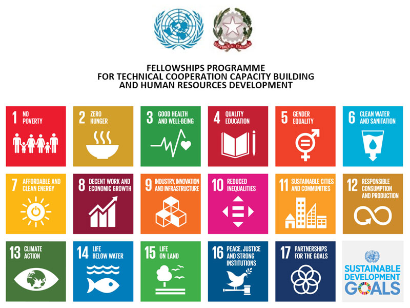 Fellowships Programme for Technical Cooperation Capacity Building and Human Resources Development
