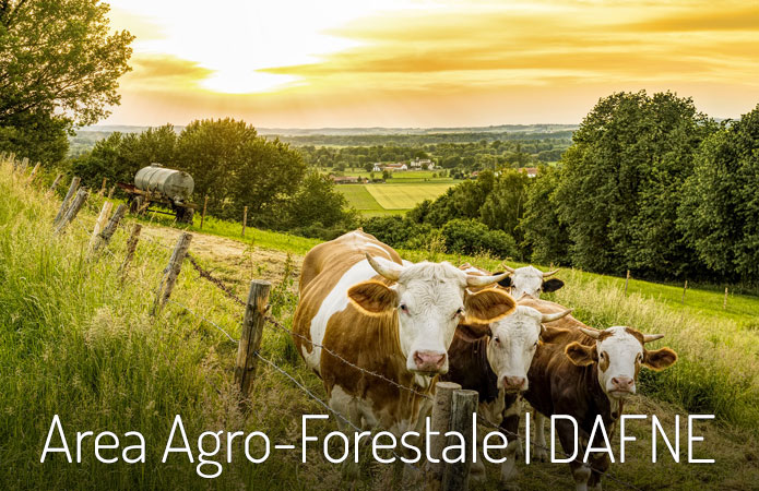 Area Agro Forestale